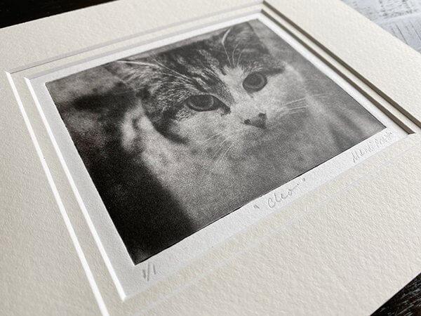 Detail of Custom Pet Portrait for Cat Cleo