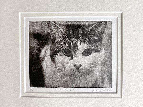 Matted artwork of custom pet portrait for cat cleo