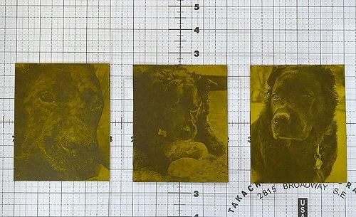 3 etched plates for custom dog portrait