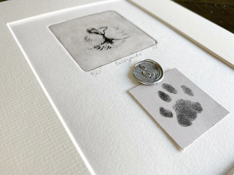 close up of cat portrait with paw print