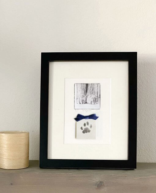 Pet-Art-Paw-Prints-Framed