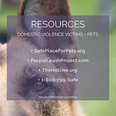 resources for pets and people to get safe from domestic violence